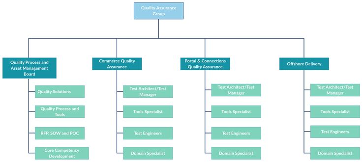 In this org chart template, it illustrates a dedicated group for - hospital organizational chart