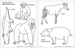African rainforest animals (Site has many other free animal printables!)