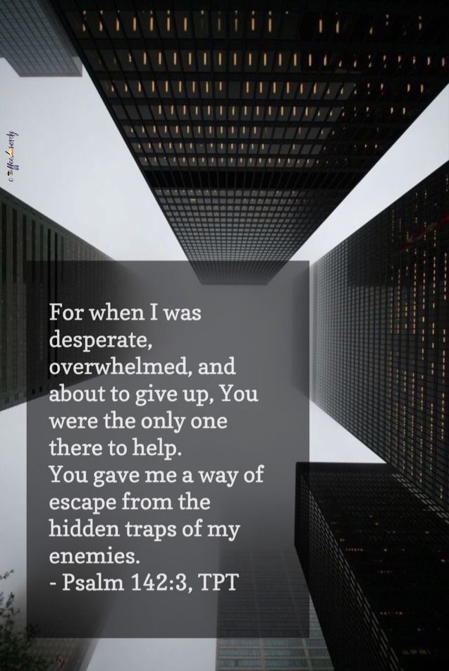 """For when I was desperate, overwhelmed, and about to give up, You were the only one there to help. You gave me a way of escape from the hidden traps of my enemies."" (Psalm 142:3, TPT)"