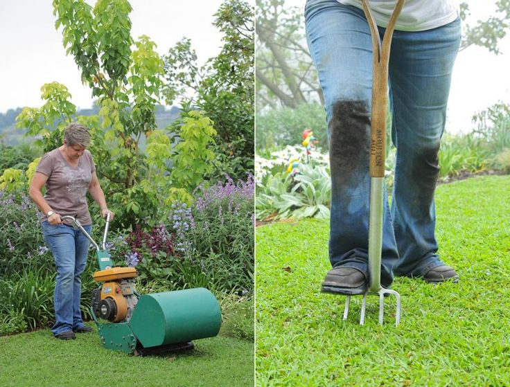 Spring treatment of lawns
