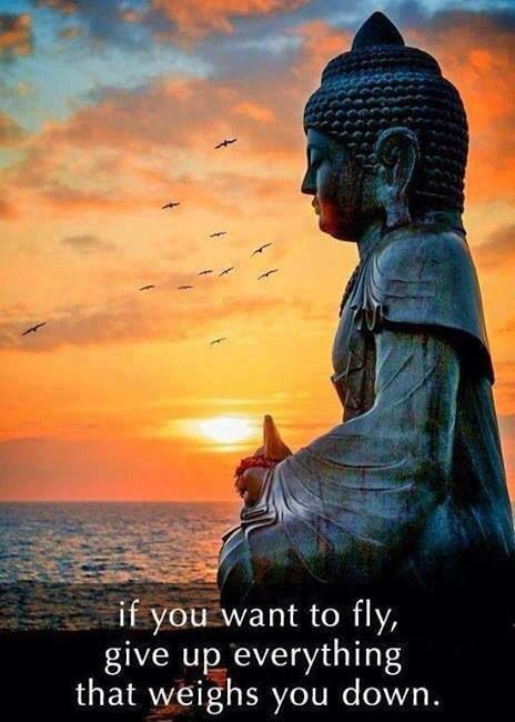 Want to fly