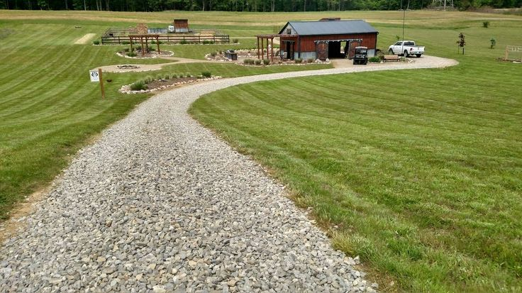 How To Use Vinegar To Kill Weeds – A More Natural Approach | Hometalk