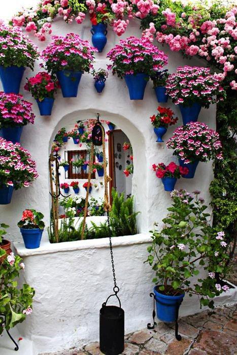 Wall Flowers..