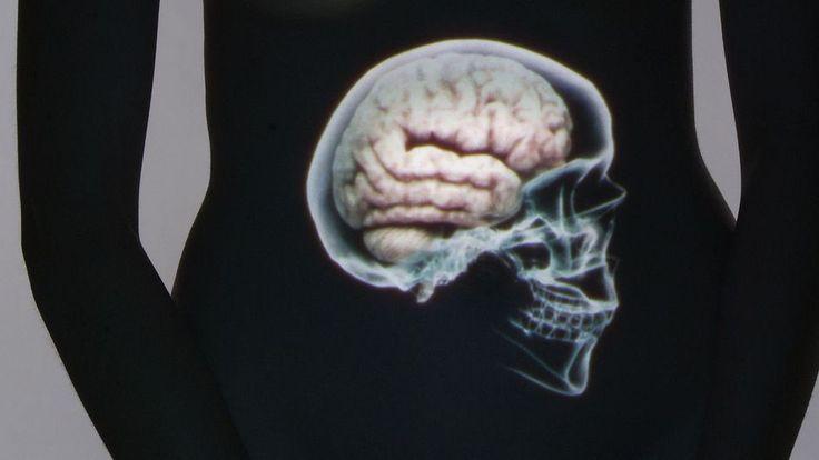 ******* Le ventre, notre deuxième cerveau ******* cet organe bourré de neurones, et son bacteriote, que les chercheurs commencent à peine à explorer ? - Selon cette captivante enquête scientifique, il semblerait que notre cerveau ne soit pas le seul maître à bord.