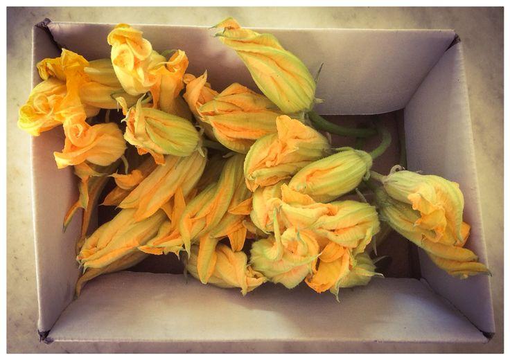 it's a kind of magic (edible flowers II)