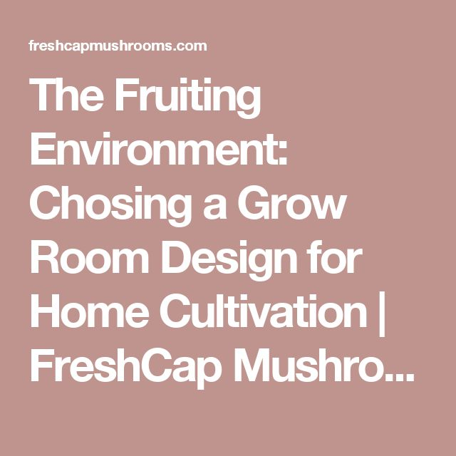 The Fruiting Environment Chosing A Grow Room Design For Home Cultivation Freshcap Mushrooms Grow Room Design Grow Room House Design