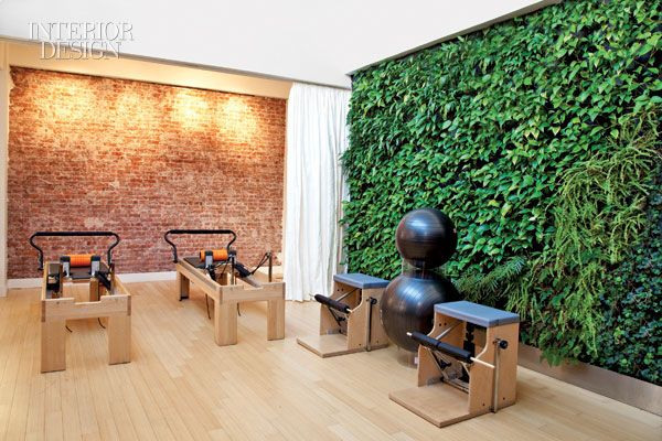 Interior Design Pilates Studio- incredible living wall                                                                                                                                                                                 More