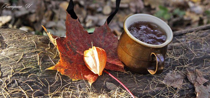 October. a walk in the Park. drink tea
