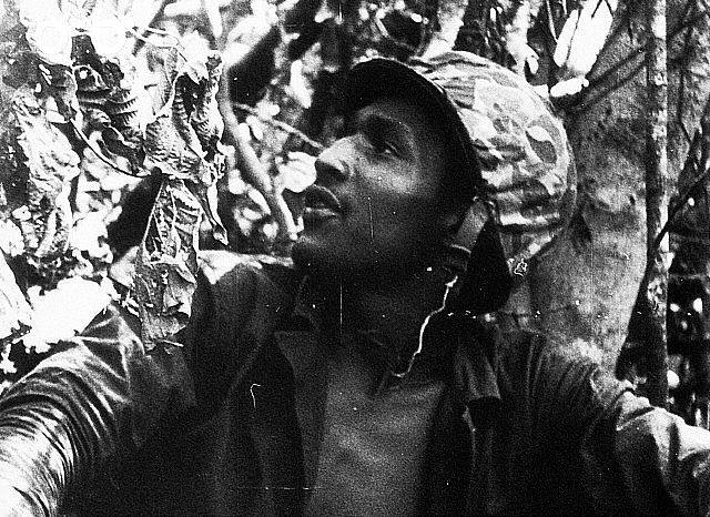Battle of Peleliu, 1944 / A US Marine watches for signs of the enemy during the seizure of Peleliu.