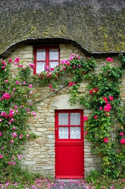Climbing roses and cottage door!