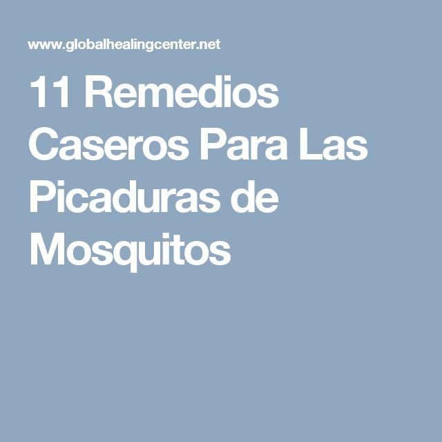 11 Remedios Caseros Para Las Picaduras de Mosquitos