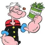 Popeye had something right! It turns out that, thanks to the inner workings of both our cells and plants' cells, eating raw spinach can help you increase your physical fitness and build muscle strength. How does it work? It has a lot to do with thenitratefound in spinach, which helps your cells work more effectively! How the Body Uses Nitrate ...