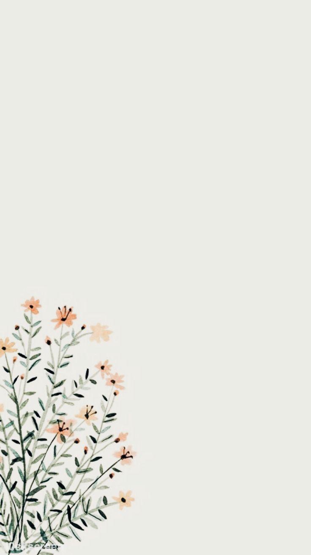 Iphone Samsung Wallpaper Simple Floral Flower Background Wallpaper Flower Backgrounds Flower Wallpaper