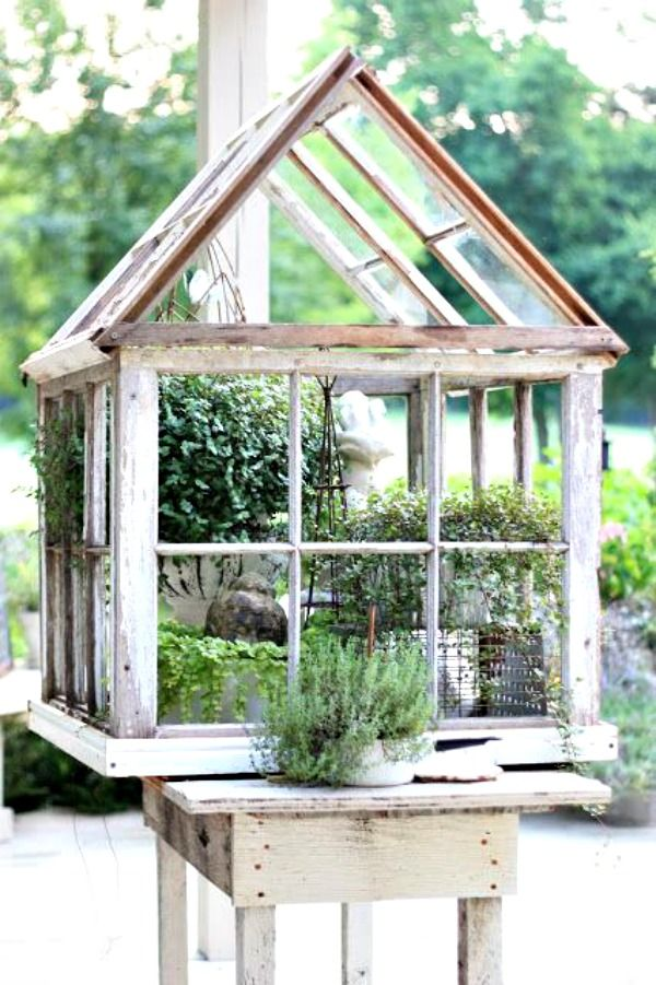 Old windows? no problem. Make a little green house for your plants.