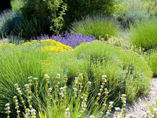 Cliquez pour voir la prochaine image jardin pinterest google et recherche for Recherche jardinier pour entretien jardin