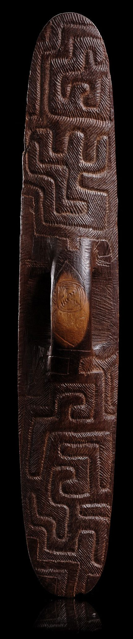 Shield from western Australia TRIBAL ART l KORTMANN