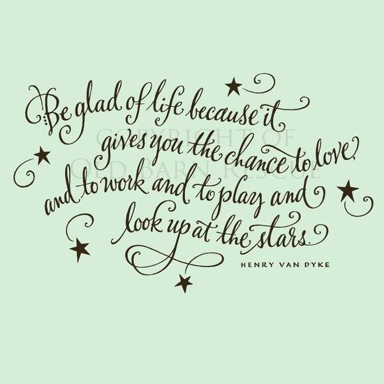 Appreciate Life Quotes: Appreciating Life Quotes