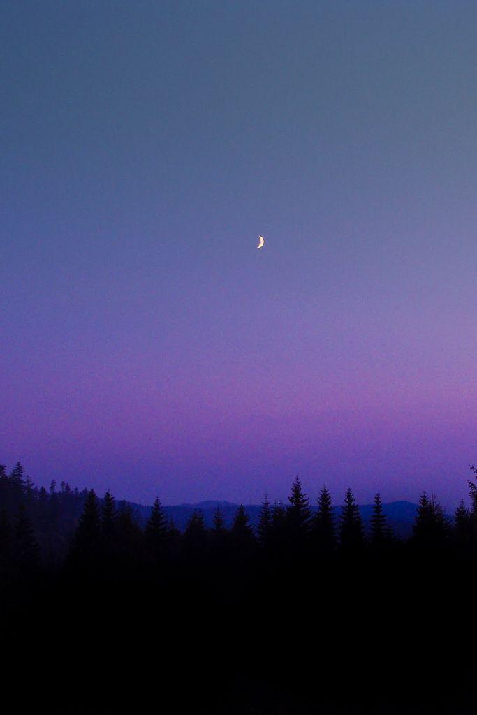 The moon.. .. .. .....look!... .  .