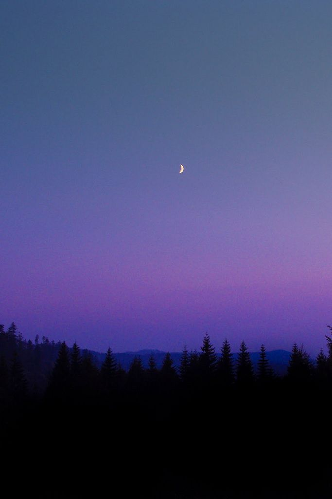 A new moon. . .