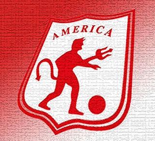 América de Cali  Es, junto con Los Millonarios, el equipo más laureado del fútbol colombiano. Las trece estrellas en su escudo lo dicen todo. Sin embargo, su historia se vio empañada en 2011, cuando tras jugar la Promoción con Patriotas de Boyacá perdieron la categoría. En 2012 los 'Diablos Rojos' jugarán el Torneo de Ascenso.    Por: El País.com.coJueves, Agosto 11, 2011