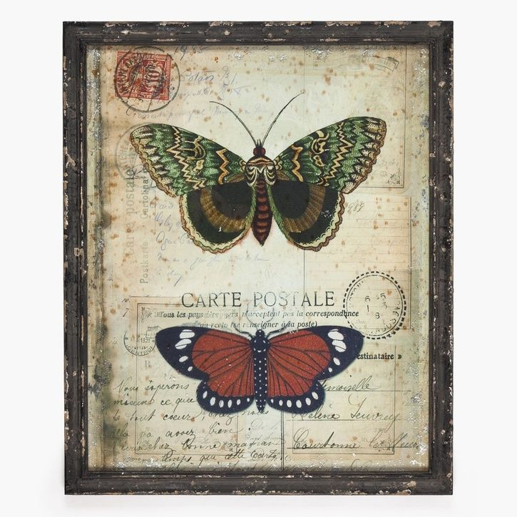 India Jane Framed Butterfly 'Postcard' II   Prezola - The Wedding Gift List