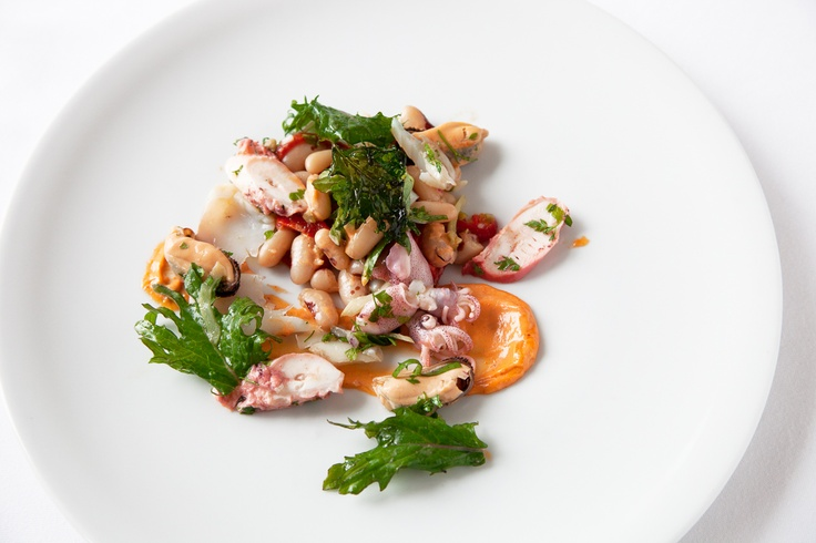 Seafood Salad with baby squid, octopus, smoked pollock, white beans ...