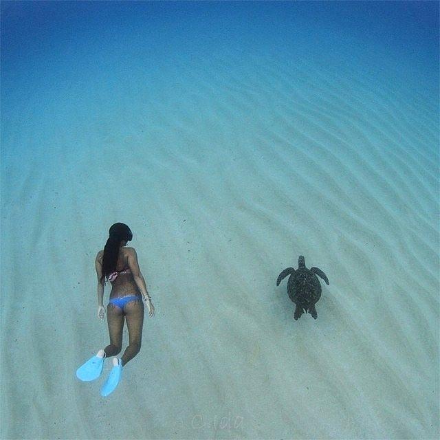 Hawaii   Tag your best friend!  Double tap if you like it!  Source: @travelersmagazine  #landscapestyles #beautifulcity #instaphotos #lovethemsomuch #stormy #landscaper #flowerlovers #watersports #water_captures #bluesea #beautifulbaby #frends #flowerchild #loveatfirstsight #skyview #travelbuddy #travelstagram #adventurethatislife #naturesbeauty #bestview #lagoon #openmyworld #viewpoint #adventureawaits #travelogue #naturewalk #travelphotos #travelphotographer #lakes #sunrise_and_sunsets