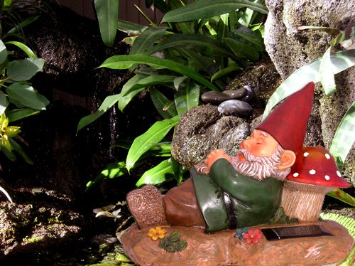 Gnome In Garden: 100 Best Images About F- Gnome Sayin? On Pinterest