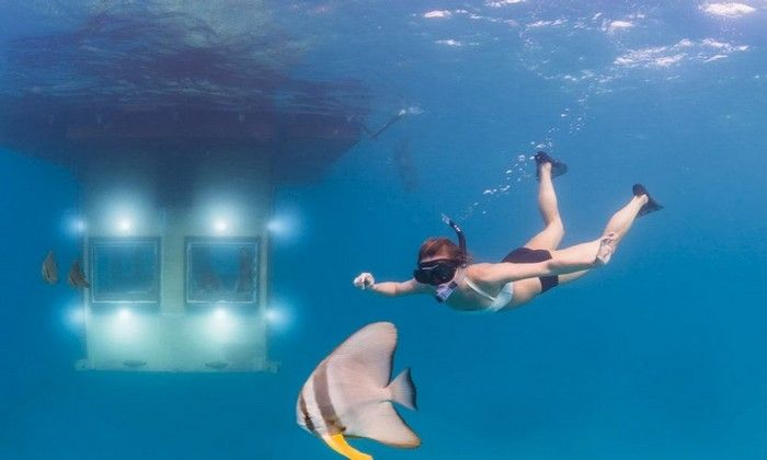 1000 ideas about underwater bedroom on pinterest sea for Underwater bedroom designs