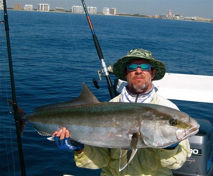 27 best greater amberjack images on pinterest fishing for Old salt fishing