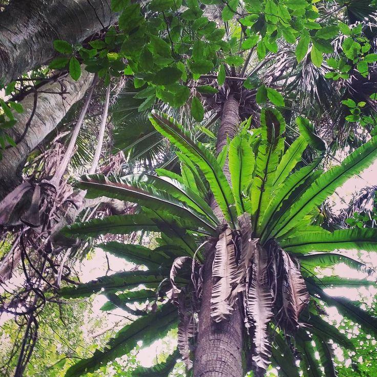 5 exquisite, little-known walking tracks to explorein Wollongong   Illawarra Mercury