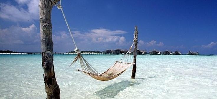 Offres de vacances, nuits d'hôtel, citytours, séjours en parcs d'attraction, sorties en famille…