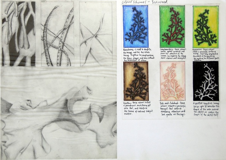 International GCSE Art Sketchbook: Coursework Project 98%amiria [blog]
