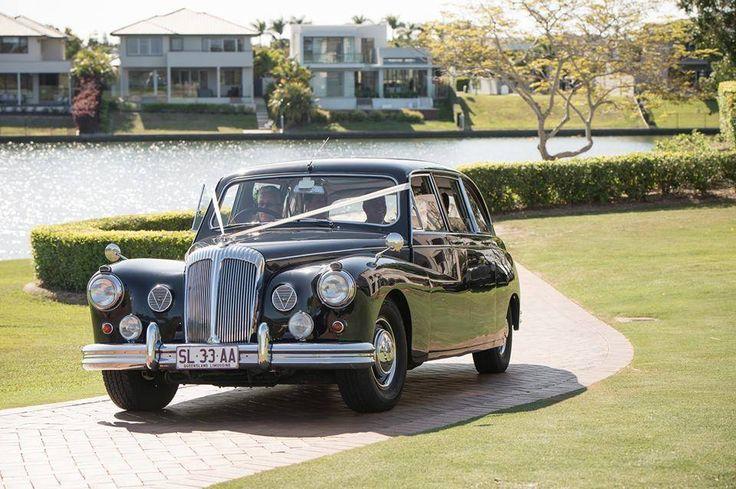 Classic Daimler Majestic Major Limousine www.tictactours.com.au #weddingcarsbrisbane #classiccarhirebrisbane Gallery