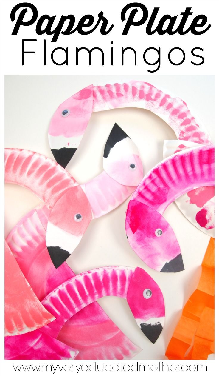 Studying birds or colors? Here's a great kid's crafting activity Paper Plate…