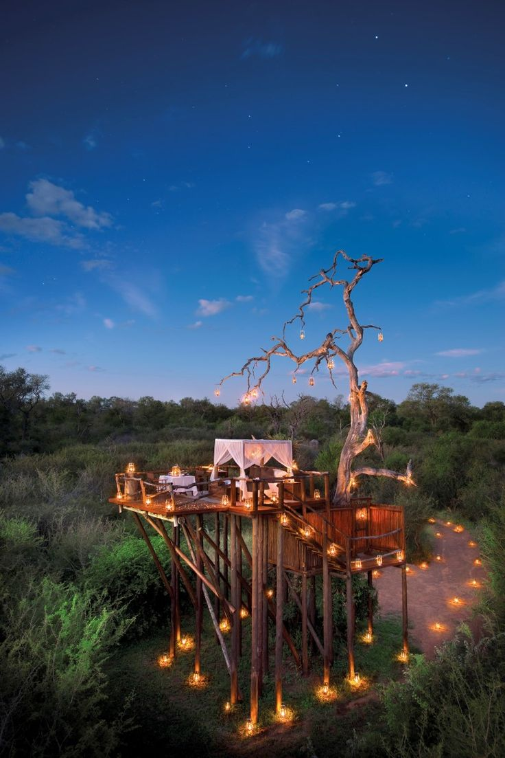 Lion Sands Treehouses  Lion Sands Reserve prides itself on its holistic approach to safari and even employs a full time ecologist to monitor the effect of commercialization on the wilderness. The reserve, spread across Sabi Sands Private Game Reserve and Kruger National Park, includes four luxurious lodges and four breathtaking treehouses for guests to experience.
