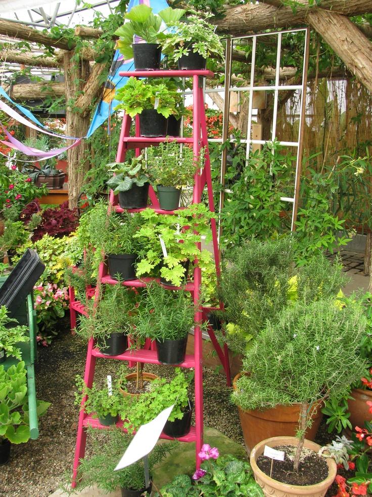 7 best The Garden images on Pinterest | Botanical gardens ...