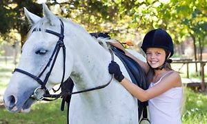 Groupon - Horseback-Riding Lesson for One, Two, or Four or a 90-minute Group Event at Sonrise Ranch (Up to 55% Off)  in Sonrise Ranch. Groupon deal price: $32