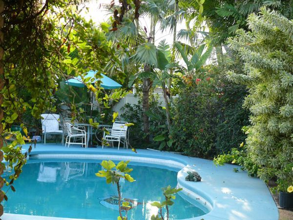 Affordable Paradise - Tropical Garden Cottage - Hawaii Vacation Rental Bed and Breakfast
