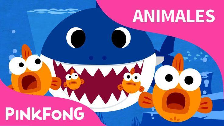 Tiburón Bebé   Animales   PINKFONG Canciones Infantiles