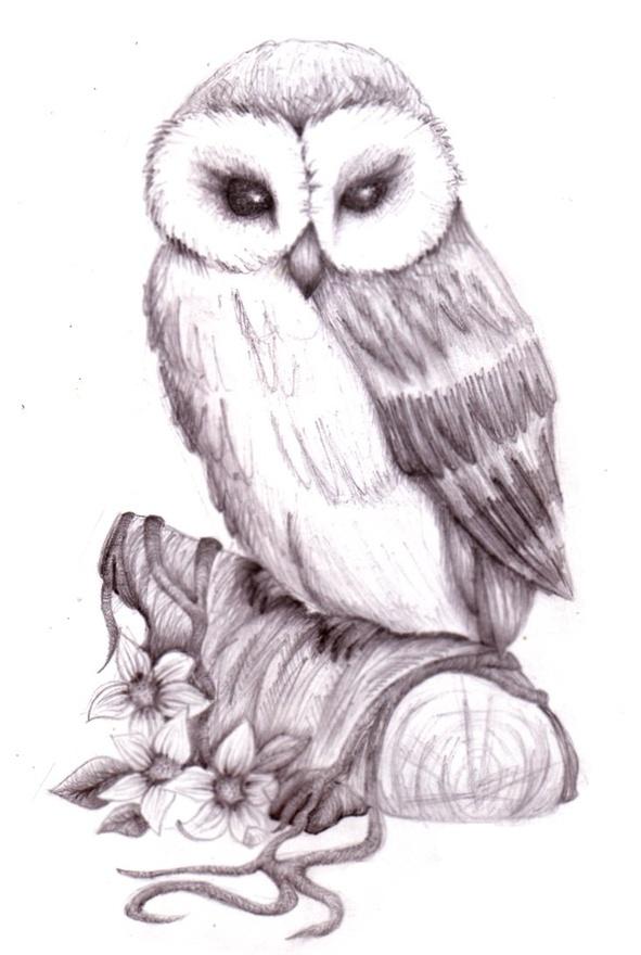 Owl tattoo. Love the eyes