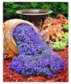 Flower Garden Ideas Texas 10 best gardening ideas images on pinterest | gardening, garden