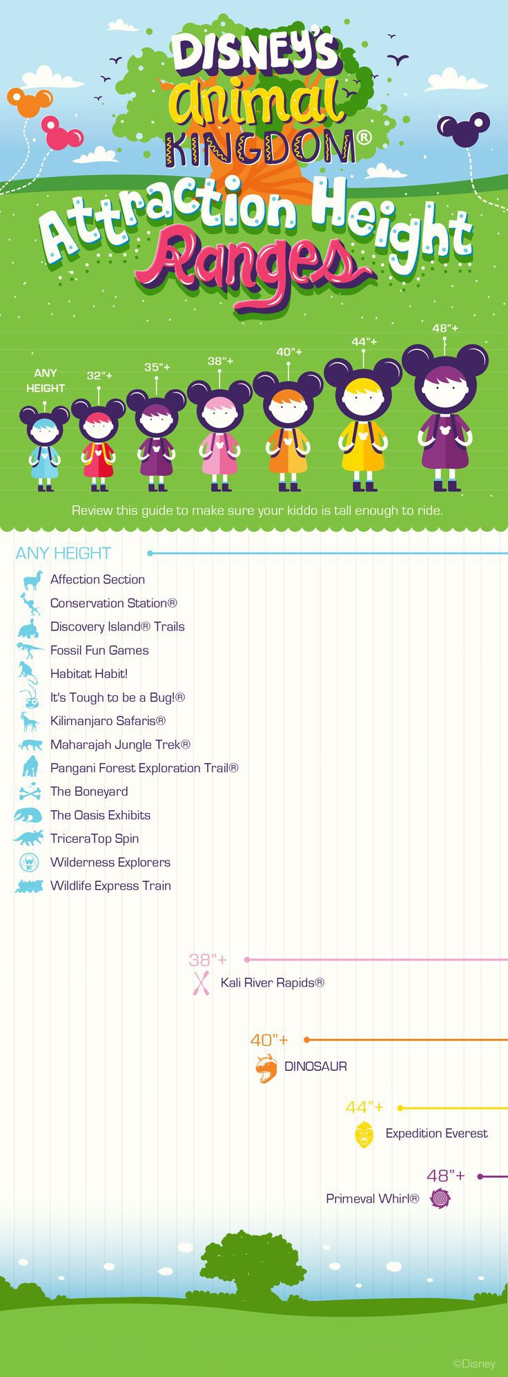 Make sure your little ones are tall enough to ride with this Disney's Animal Kingdom attraction height guide!