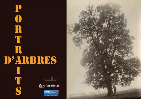 Exposition 2013 : Portraits d'Arbres / ©Musée du Vivant - AgroParistech