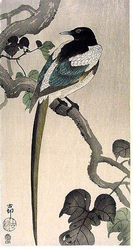 hanga gallery . . . torii gallery: Magpie by Ohara Koson