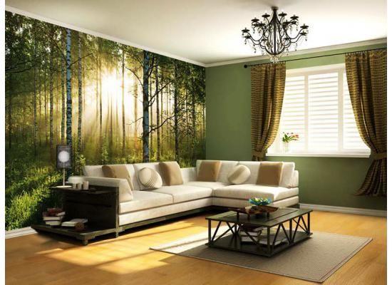 Birch Wood Walltattoo Forest WallpaperWallpaper MuralsLiving Room