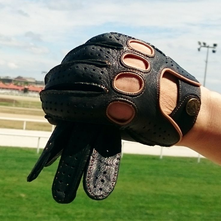 Driving gloves. webshop: www.alpagloves.com