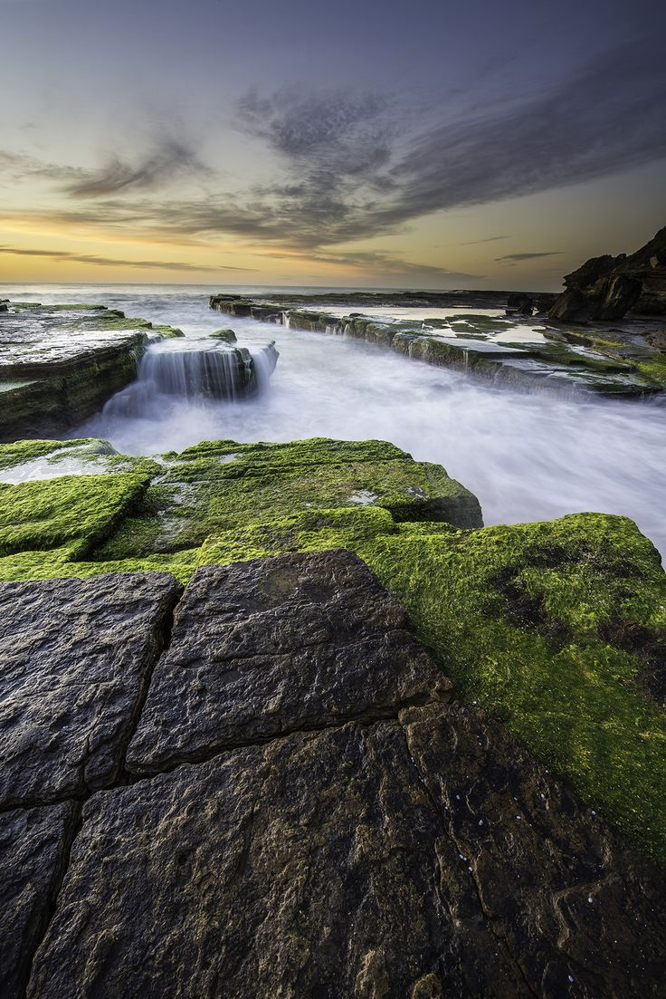 It is pretty rare that I will post a photo in the blog the day I took it, but I decided to head up to Sydney's Northern Beaches for sunrise this morning. The tide was low and rising and the moss at Turimetta is only this vibrant green for a little while longer. As the water temps drop so does the vibrant green moss. It is such a nice spot to watch the sun come up… enjoy!