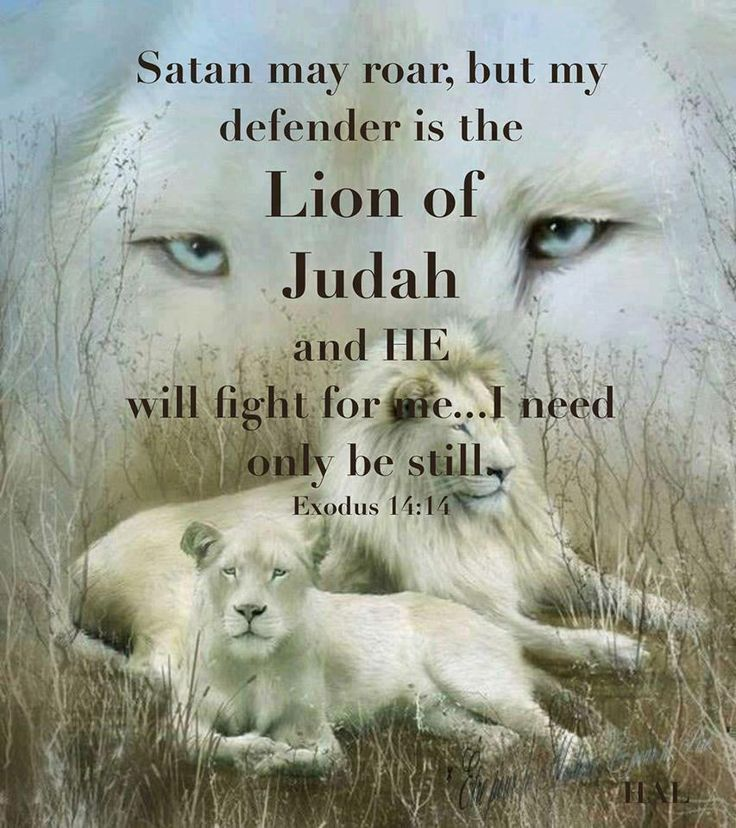 Exodus 14:14 ❥ Lion of Judah