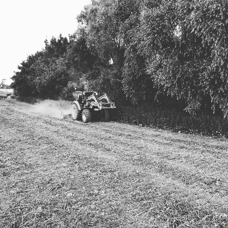 Out with the #powerharrow today ready for #covercrop to be #planted. . #agriculture #agric #game #gamebird #gamebirds #gamebirdmanagement #gamemanagement #pheasant #poult #teaching #countryside #countrysidemanagement #student #fe #education #tractor #case #caseloader http://butimag.com/ipost/1556792658990822847/?code=BWa1qzUFXW_
